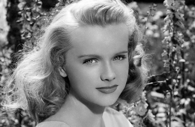 Anne Francis Body Measurements Breasts Height Weight
