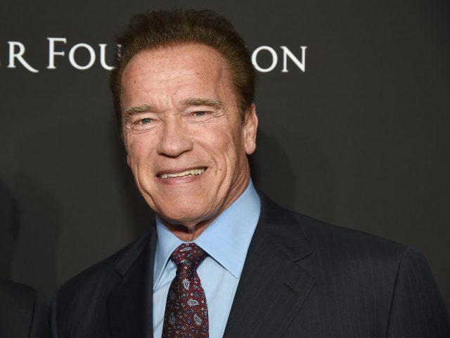 Arnold Schwarzenegger's Body Measurements Shoe Size Height Weight